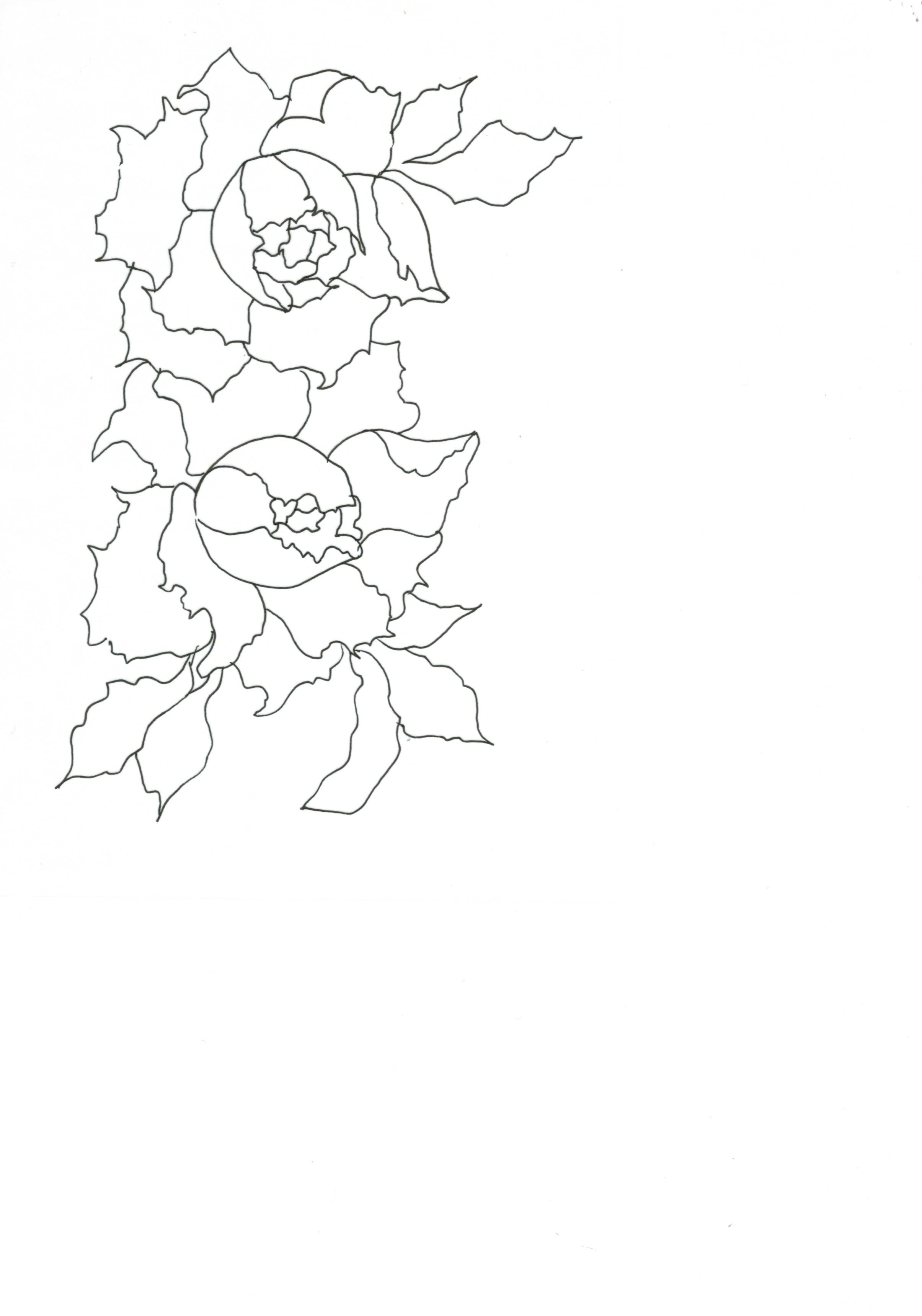 pfingstrose zeichnen blumen zeichnung, zeichnen und malen - natalehle.de - unikate aller art, Design ideen